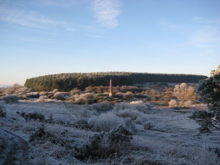 Ford Moss Nature Reserve and Colliery